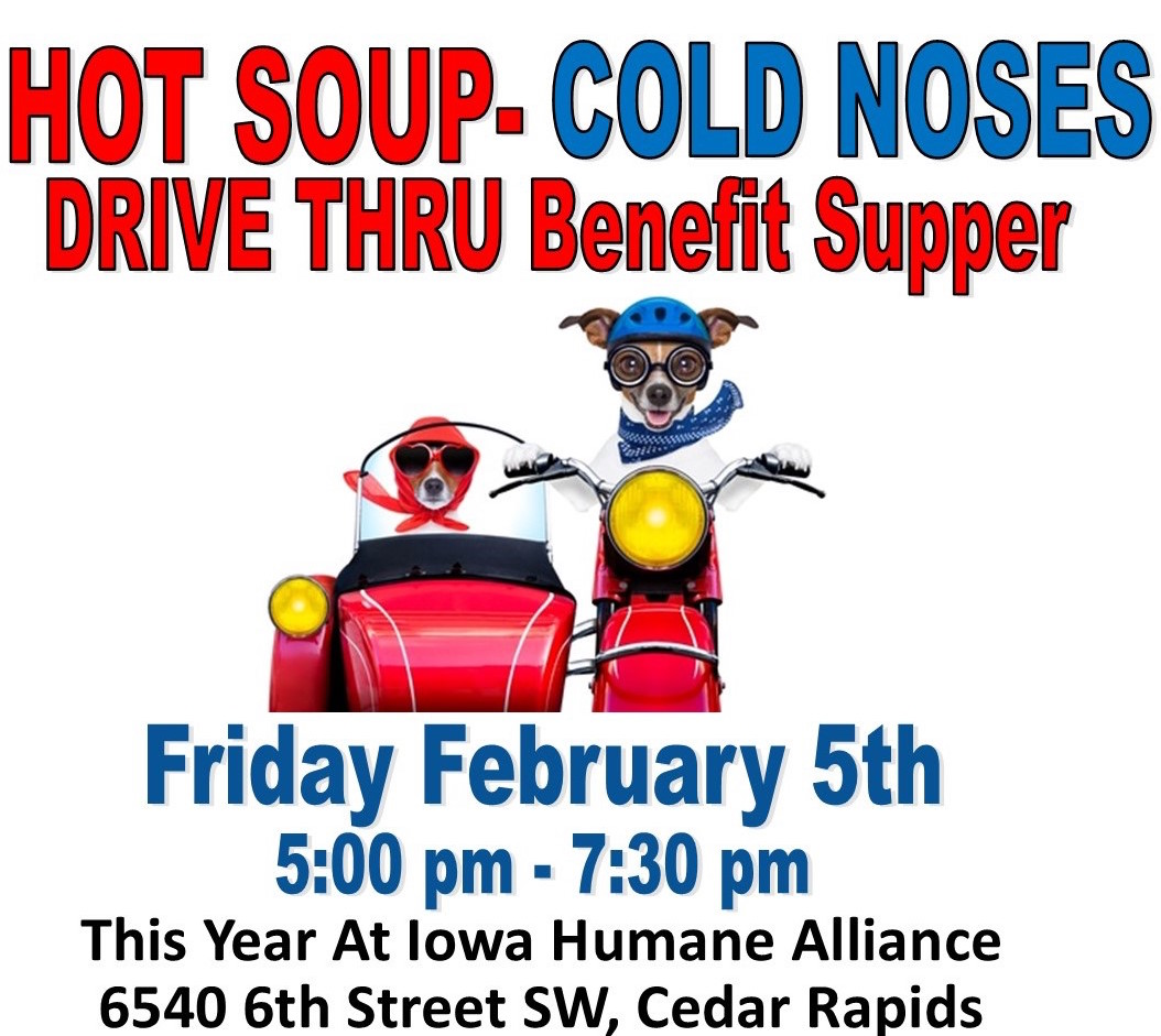 Hot Soup - Cold Noses Benefit!