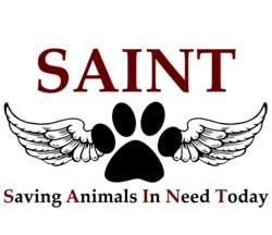 Saint Rescue